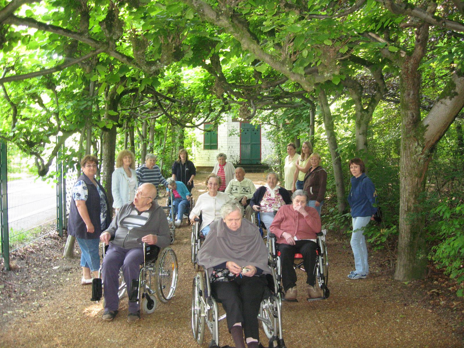 Ausflug von Senioren auf einem Weg mit Bäumen